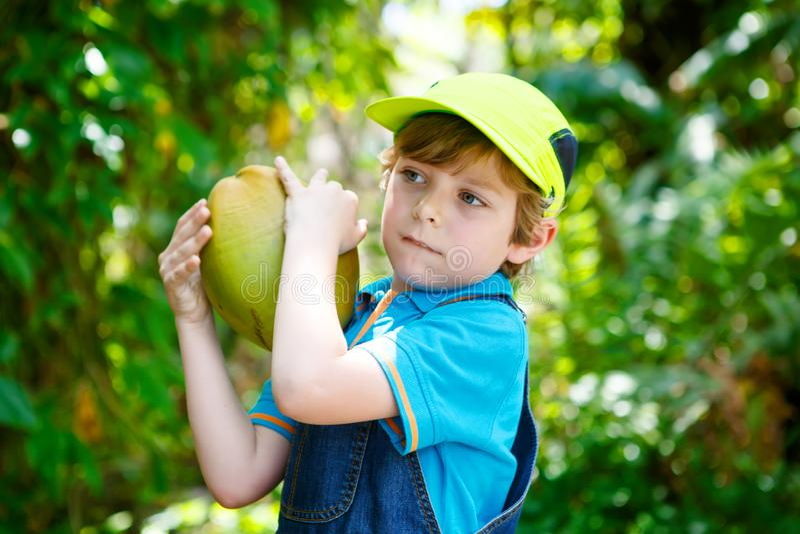 Ευτυχής αστείος λίγο προσχολικό αγόρι παιδιών που κρατά την τεράστια καρύδα στοκ φωτογραφία με δικαίωμα ελεύθερης χρήσης