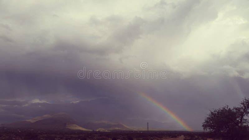 Ευτυχής βροχή στοκ φωτογραφίες