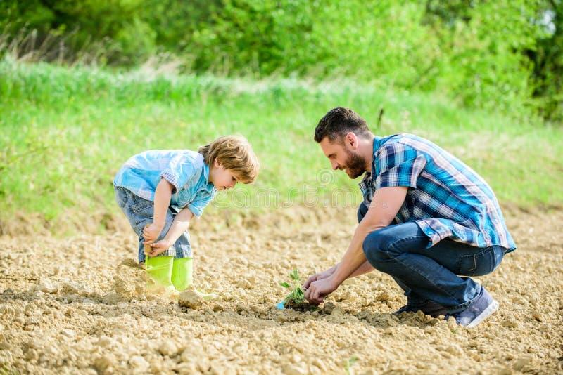 Ευτυχής γήινη ημέρα Οικογενειακό δέντρο πλούσιο φυσικό χώμα Αγρόκτημα Eco μικρός πατέρας βοήθειας παιδιών αγοριών στην καλλιέργει στοκ εικόνες