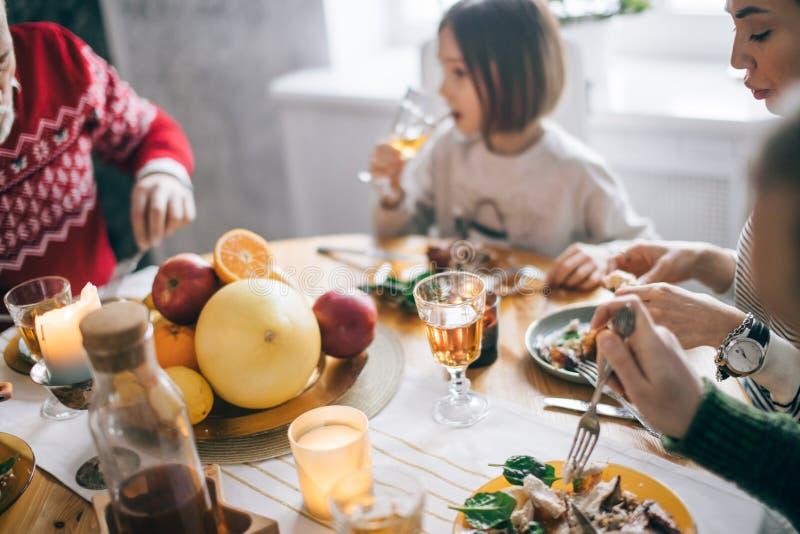Ευτυχής εορτασμός ημέρας των ευχαριστιών με τους συγγενείς στοκ φωτογραφία με δικαίωμα ελεύθερης χρήσης