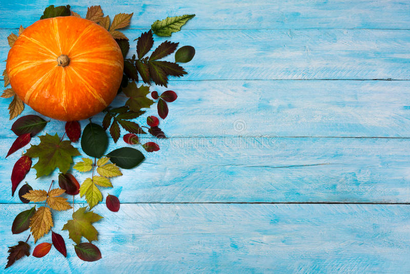 Ευτυχής ημέρα των ευχαριστιών με τα φύλλα πτώσης στο μπλε υπόβαθρο στοκ εικόνα με δικαίωμα ελεύθερης χρήσης