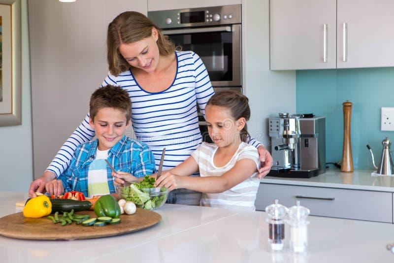 Ευτυχής οικογένεια που προετοιμάζει το μεσημεριανό γεύμα από κοινού στοκ εικόνες
