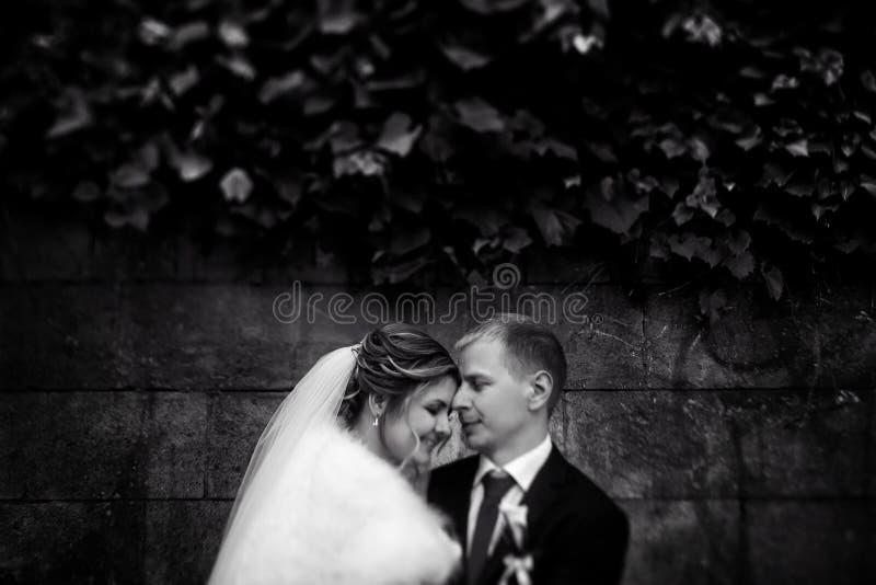 Ευτυχής πανέμορφη ξανθή νύφη και μοντέρνος όμορφος νεόνυμφος με αληθινό στοκ εικόνες με δικαίωμα ελεύθερης χρήσης