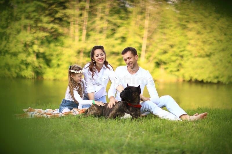 Ευτυχής πατέρας μιας κόρης και ένα έγκυο mom σε ένα πικ-νίκ στοκ εικόνες με δικαίωμα ελεύθερης χρήσης