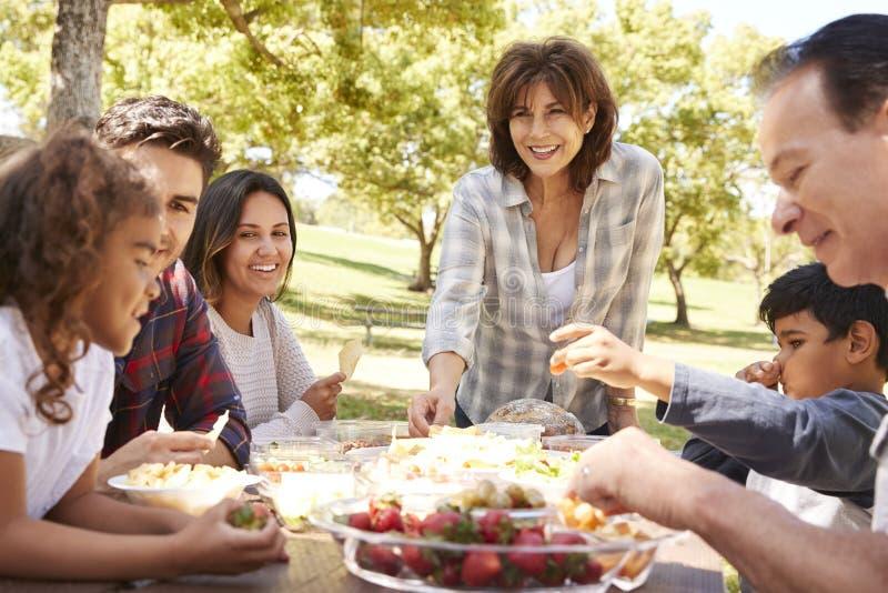Ευτυχής πολυ οικογένεια παραγωγής που έχει ένα πικ-νίκ σε ένα πάρκο στοκ εικόνες