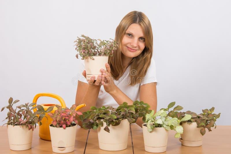 Ευτυχής συνεδρίαση κοριτσιών στη συλλογή λουλουδιών της Fitton στοκ φωτογραφία με δικαίωμα ελεύθερης χρήσης