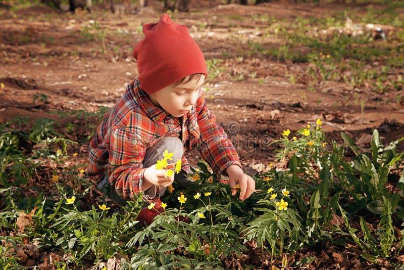 Ευτυχής χαριτωμένος λίγο μωρό σε έναν πράσινο χορτοτάπητα χλόης με τα ανθίζοντας κίτρινα λουλούδια μια ηλιόλουστη ημέρα άνοιξης ή στοκ φωτογραφίες με δικαίωμα ελεύθερης χρήσης