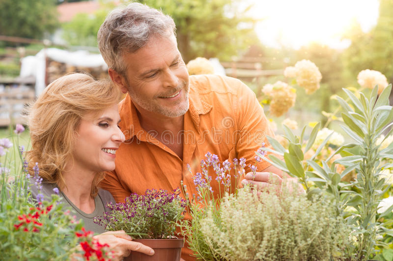Ευτυχής ώριμη κηπουρική ζεύγους στοκ εικόνες