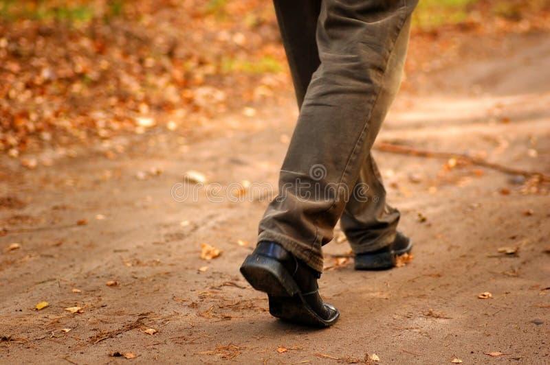 ευτυχή βήματα φθινοπώρου στοκ εικόνες