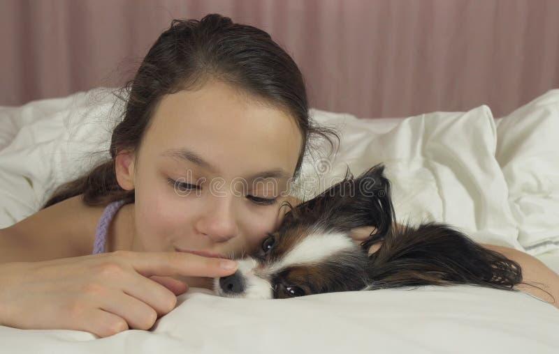 Ευτυχή φιλιά και παιχνίδια κοριτσιών εφήβων με το σκυλί Papillon στο κρεβάτι στοκ φωτογραφία
