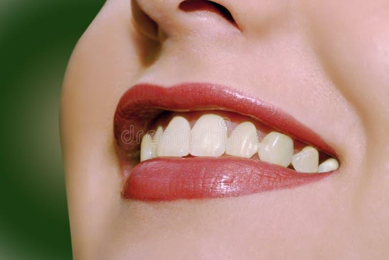 ευτυχή χείλια Στοκ φωτογραφίες με δικαίωμα ελεύθερης χρήσης