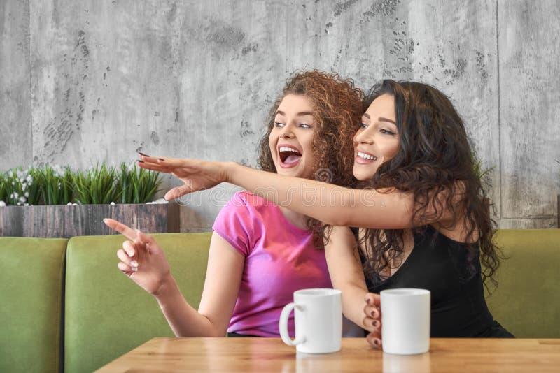 Ευτυχή, όμορφα κορίτσια που έχουν τη διασκέδαση από κοινού στοκ εικόνα
