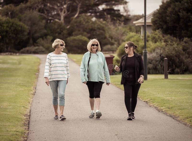 Ευτυχείς ενεργές γυναίκες ατόμων τρίτης ηλικίας που περπατούν και που εκπαιδεύουν μαζί στον υγιή τρόπο ζωής αποχώρησης στοκ φωτογραφίες με δικαίωμα ελεύθερης χρήσης