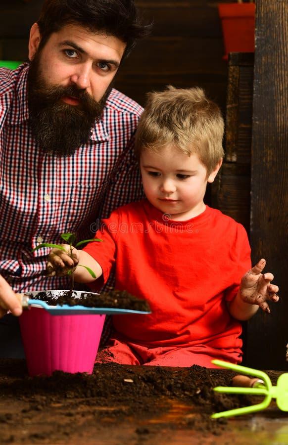 ευτυχείς κηπουροί με τα λουλούδια άνοιξη Γενειοφόρος φύση αγάπης παιδιών ατόμων και μικρών παιδιών Πότισμα προσοχής λουλουδιών Χώ στοκ φωτογραφία με δικαίωμα ελεύθερης χρήσης