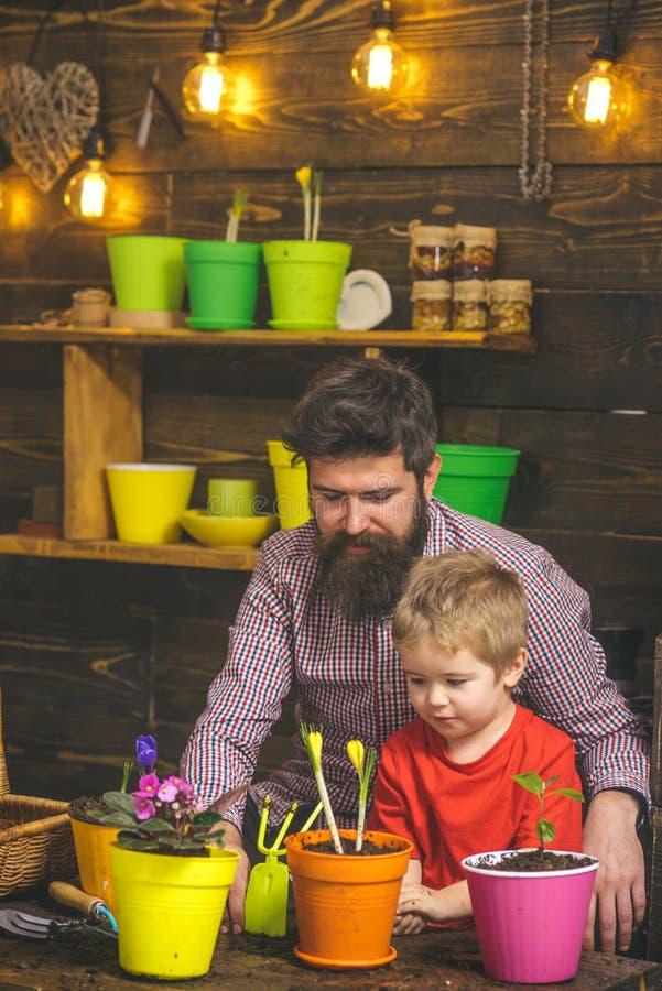 Ευτυχείς κηπουροί με τα λουλούδια άνοιξη γενειοφόρος φύση αγάπης παιδιών ατόμων και μικρών παιδιών Πατέρας και γιος Ημέρα πατέρων στοκ φωτογραφία
