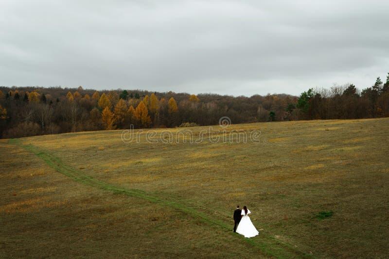 Ευτυχείς νύφη και νεόνυμφος που περπατούν στα χέρια εκμετάλλευσης τομέων, πολυτέλεια ele στοκ φωτογραφία