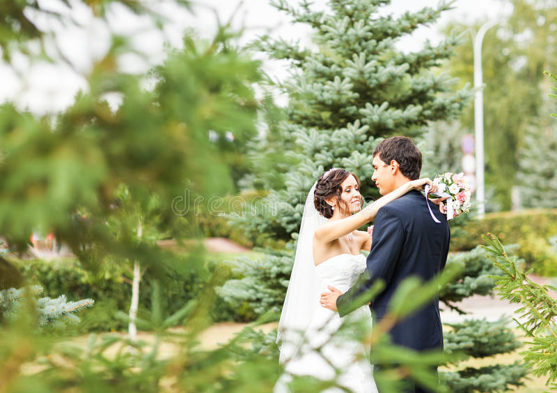 Ευτυχείς νύφη και νεόνυμφος στο γάμο τους στοκ εικόνα