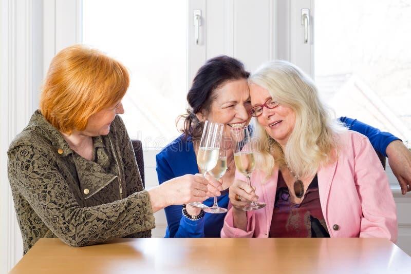 Ευτυχείς φίλοι γυναικών που έχουν το κρασί στον πίνακα στοκ εικόνες