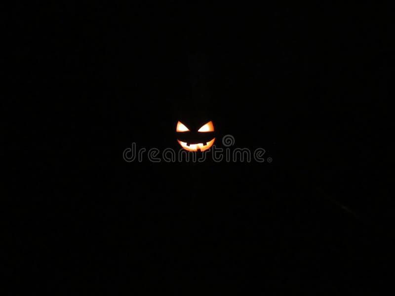 Ευχάριστα Roger στο σκοτάδι στοκ φωτογραφίες με δικαίωμα ελεύθερης χρήσης