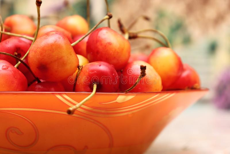 Ευχαρίστηση φρούτων παραδείσου Ακόμα ζωή των φρούτων στοκ εικόνες με δικαίωμα ελεύθερης χρήσης