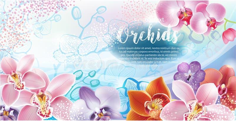Ευχετήρια κάρτα με τα λουλούδια ορχιδεών διανυσματική απεικόνιση
