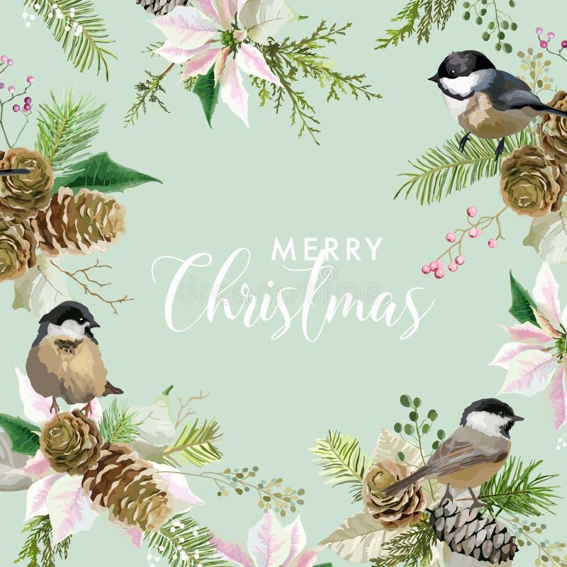 Ευχετήρια κάρτα πουλιών χειμερινών Χριστουγέννων Floral αναδρομικό υπόβαθρο Poinsettia Πρότυπο σχεδίου για τον εορτασμό περιόδου  διανυσματική απεικόνιση