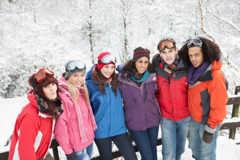 Εφηβικοί φίλοι που έχουν τη διασκέδαση στο χιονώδες τοπίο στοκ εικόνα