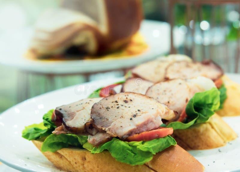 Εύγευστα σάντουιτς στο πιάτο, το γρήγορο φαγητό για το πρόγευμα ή το μεσημεριανό γεύμα στοκ φωτογραφία με δικαίωμα ελεύθερης χρήσης