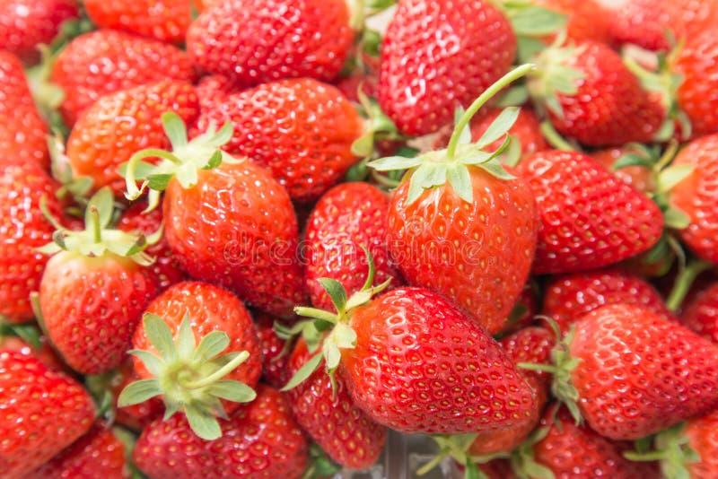 Εύγευστες ώριμες φράουλες στοκ εικόνες