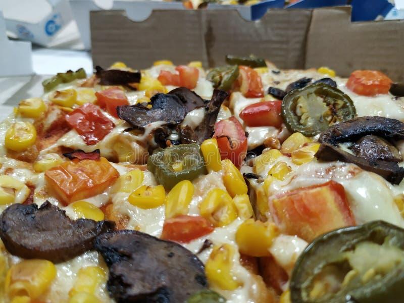Εύγευστη πίτσα από τα ντόμινο στοκ εικόνα με δικαίωμα ελεύθερης χρήσης