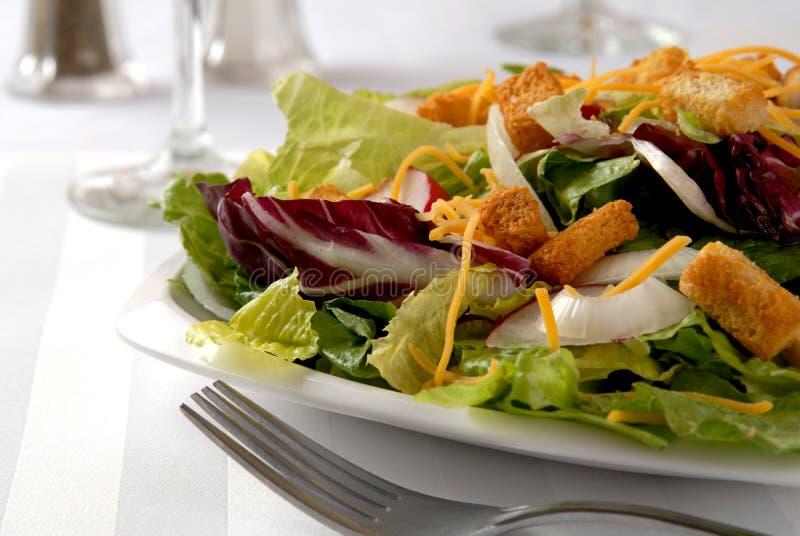εύγευστη σαλάτα στοκ εικόνες