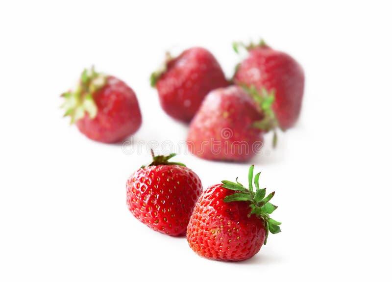 Εύγευστη φράουλα στοκ εικόνα με δικαίωμα ελεύθερης χρήσης