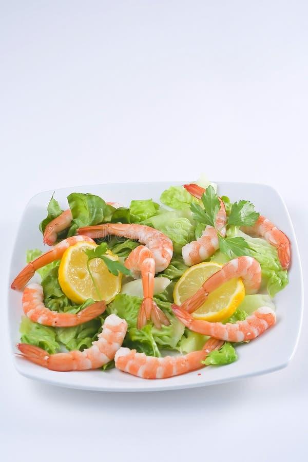 εύγευστη φρέσκια σαλάτα γαρίδων στοκ εικόνες