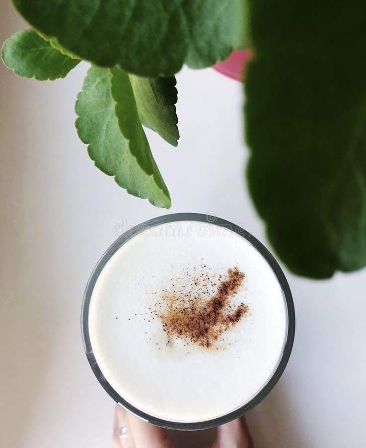Εύγευστος καφές latte με την κανέλα στο windowsill στοκ εικόνες