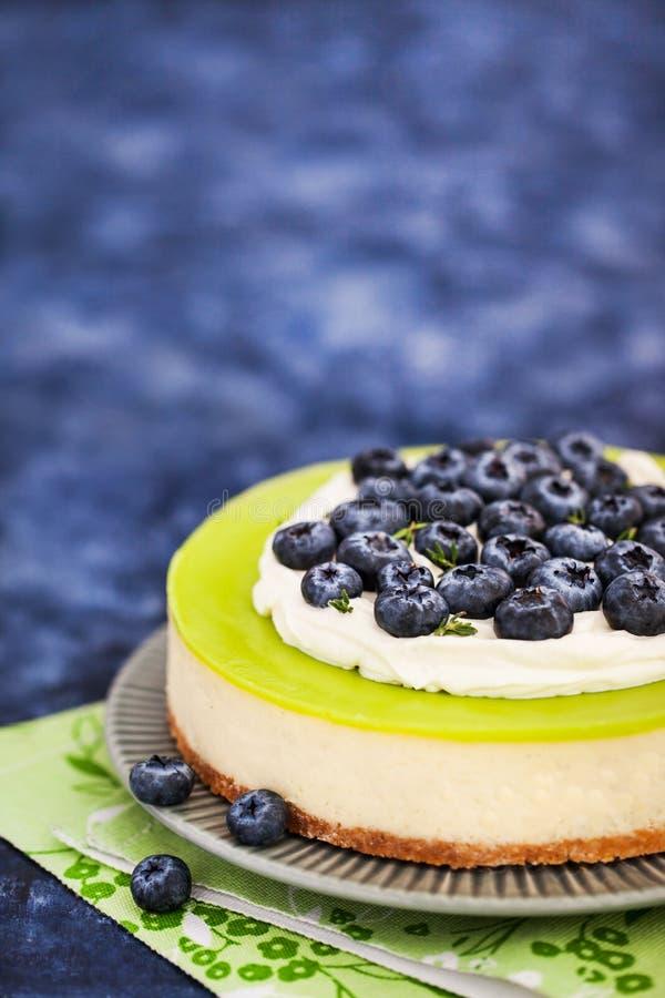 Εύγευστο βασικό cheesecake ασβέστη που διακοσμείται με τα φρέσκα βακκίνια στοκ φωτογραφία με δικαίωμα ελεύθερης χρήσης