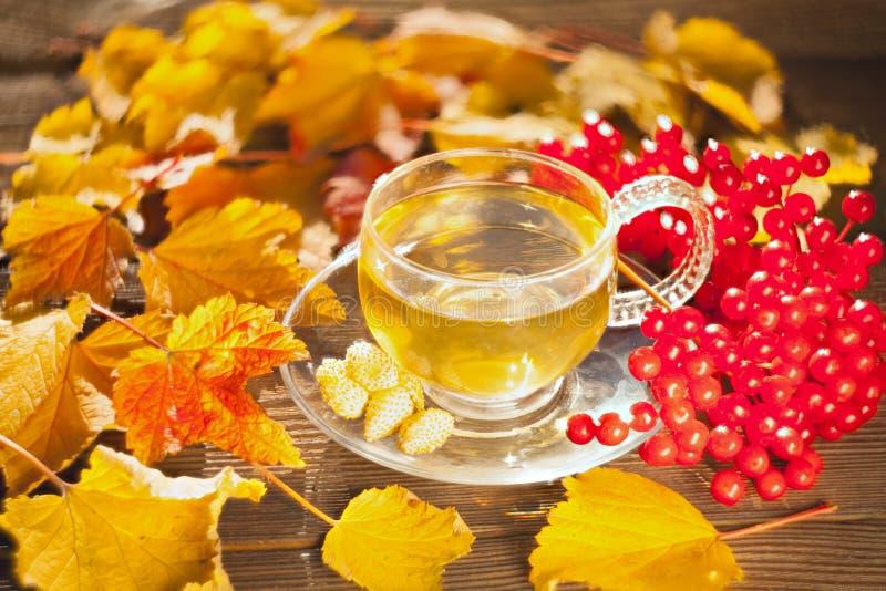 Εύγευστο τσάι φθινοπώρου σε ένα όμορφο κύπελλο γυαλιού σε έναν πίνακα στοκ φωτογραφίες με δικαίωμα ελεύθερης χρήσης
