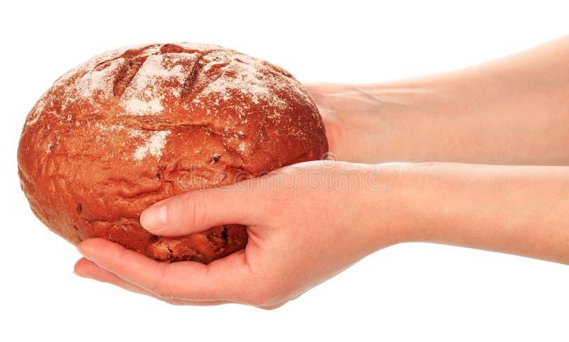 Εύγευστο ψωμί στα χέρια στοκ εικόνες με δικαίωμα ελεύθερης χρήσης