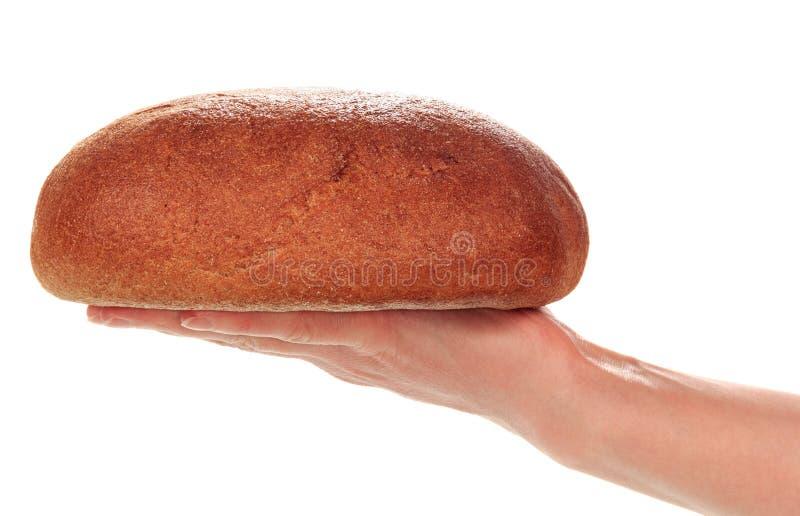 Εύγευστο ψωμί υπό εξέταση στοκ φωτογραφίες