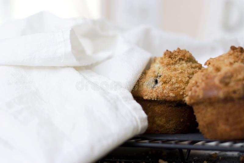 εύθρυπτες muffins βακκινίων κ&omicro στοκ εικόνες με δικαίωμα ελεύθερης χρήσης
