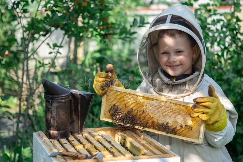 Εύθυμος μελισσοκόμος αγοριών στο προστατευτικό κοστούμι κοντά στην κυψέλη Κηρήθρα με το μέλι Έννοια οργανικής τροφής Το πιό χρήσι στοκ εικόνες με δικαίωμα ελεύθερης χρήσης