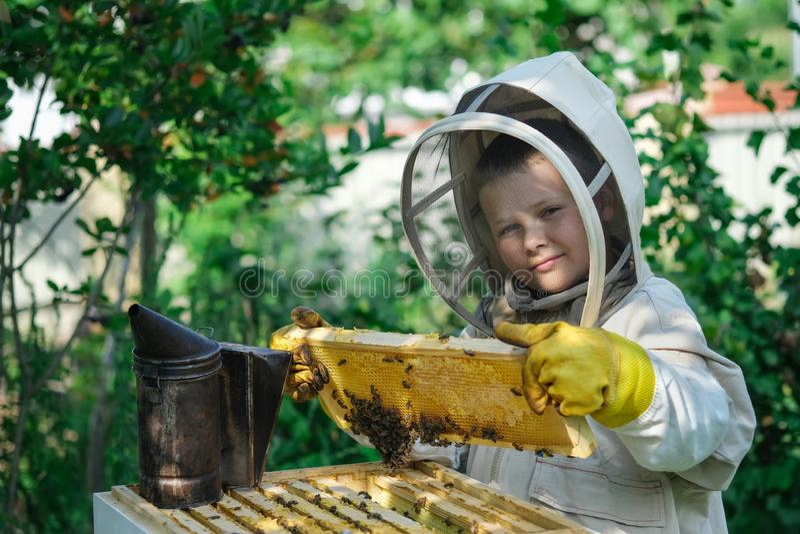 Εύθυμος μελισσοκόμος αγοριών στο προστατευτικό κοστούμι κοντά στην κυψέλη Κηρήθρα με το μέλι Έννοια οργανικής τροφής Το πιό χρήσι στοκ εικόνα