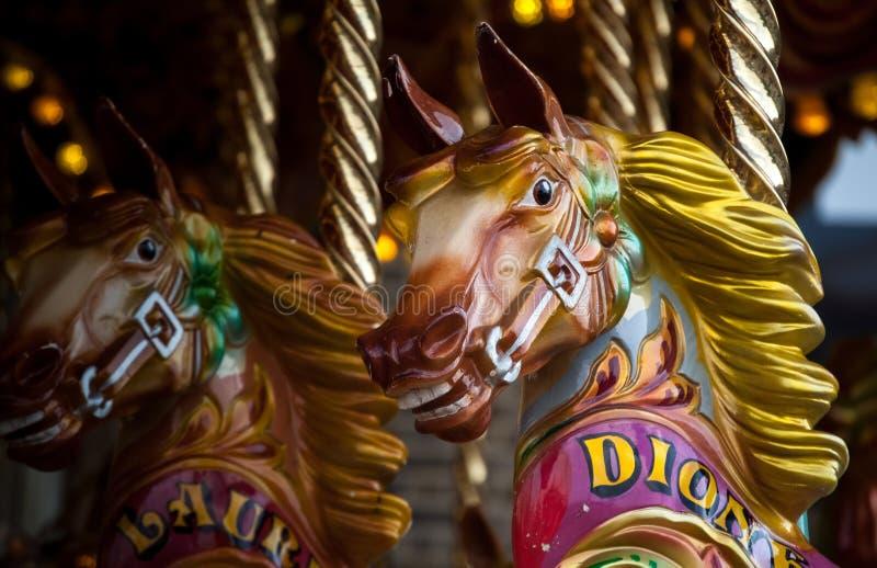 Εύθυμος-πηγαίνω-γύρω από άλογο στοκ εικόνες