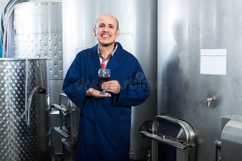 Εύθυμος ώριμος εργαζόμενος οινοποιιών ατόμων που εξετάζει το ποτήρι του κόκκινου κρασιού στοκ εικόνες με δικαίωμα ελεύθερης χρήσης