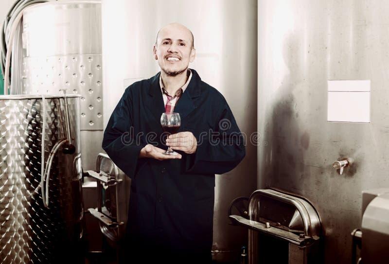 Εύθυμος ώριμος εργαζόμενος οινοποιιών ατόμων που εξετάζει το ποτήρι του κόκκινου κρασιού στοκ φωτογραφία με δικαίωμα ελεύθερης χρήσης
