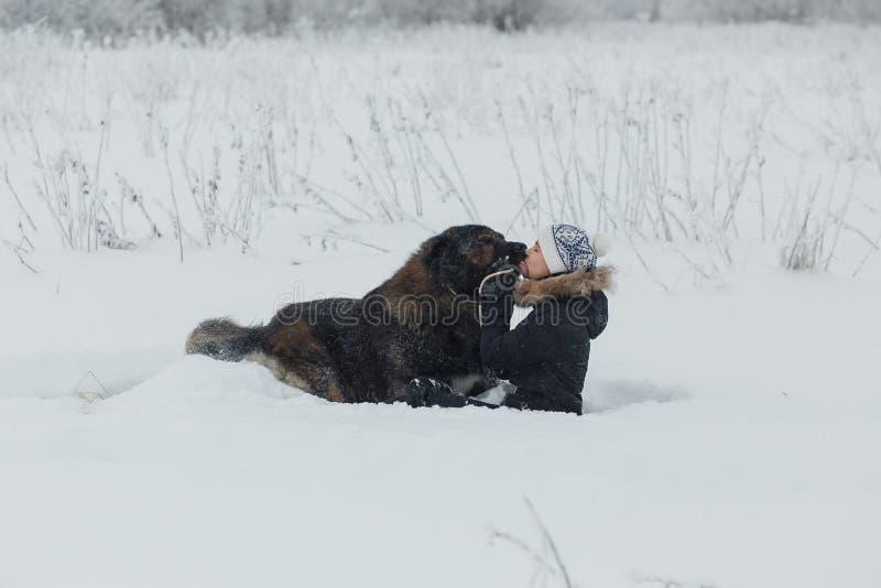 Εύθυμο νέο παιχνίδι γυναικών με το καυκάσιο σκυλί ποιμένων στο χιονισμένο τομέα στην παγωμένη χειμερινή ημέρα στοκ εικόνες
