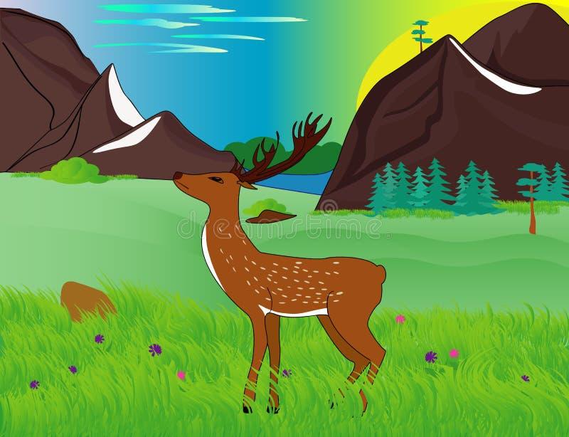Ελάφια μεταξύ των πράσινων λιβαδιών στα βουνά διανυσματική απεικόνιση