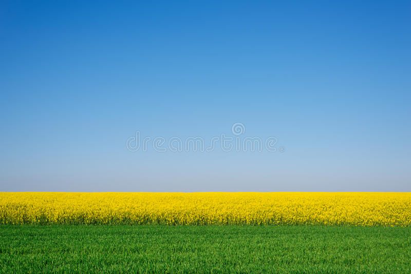 Ελάχιστο sommer στοκ εικόνες με δικαίωμα ελεύθερης χρήσης