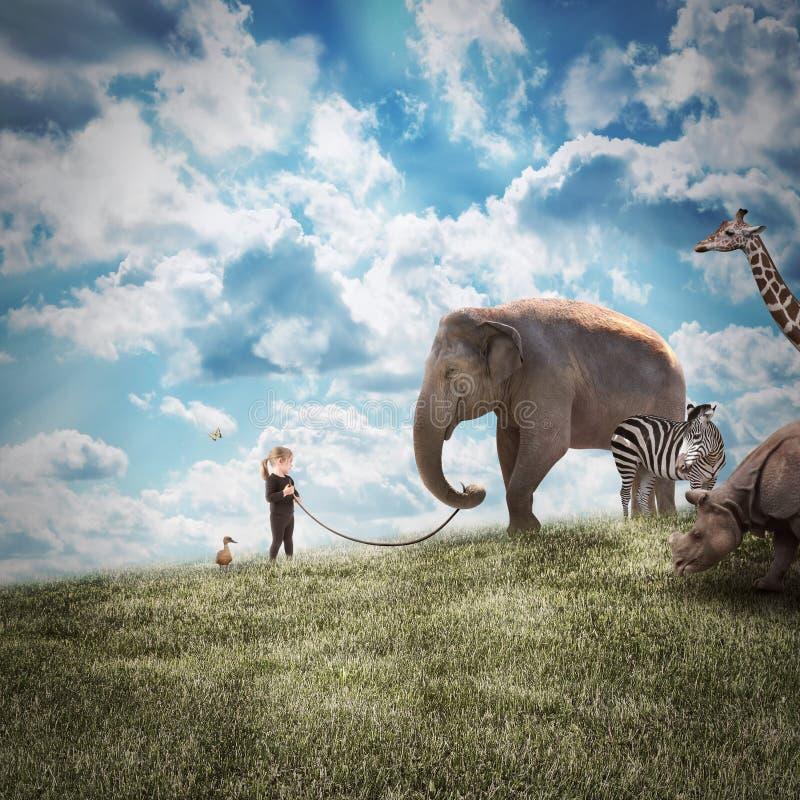 Ελέφαντας και ζώα περπατήματος κοριτσιών στη φύση