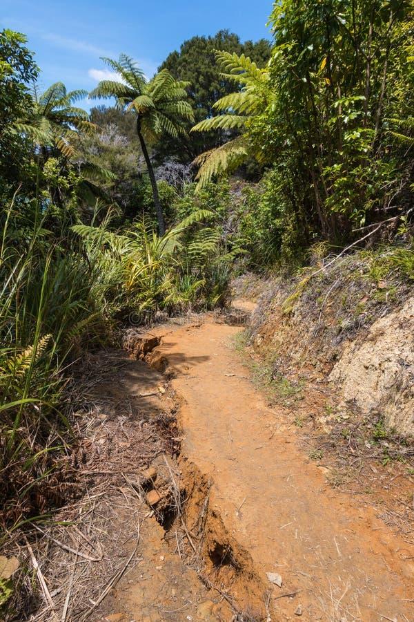 Εδαφολογικές ρευστοποίηση και καθίζηση εδάφους μετά από το σεισμό στοκ φωτογραφία