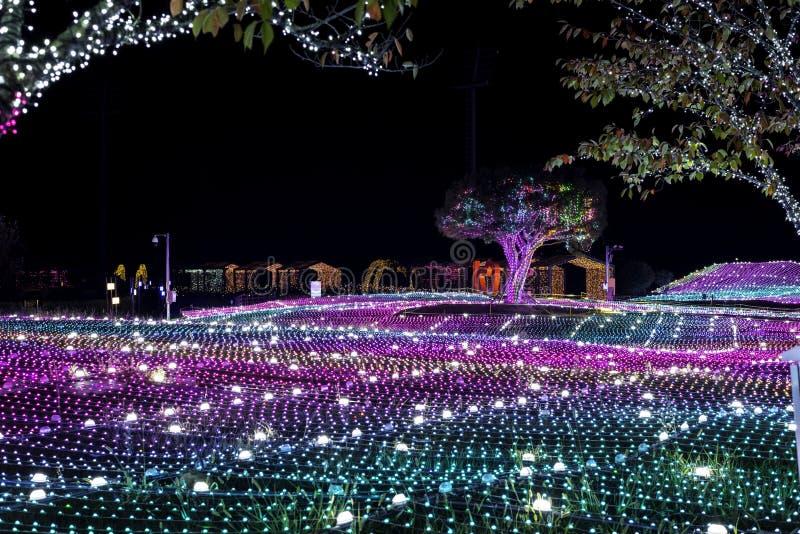 Ελαφριά νύχτα της Κορέας φεστιβάλ φωτισμού Illumia στοκ εικόνες με δικαίωμα ελεύθερης χρήσης